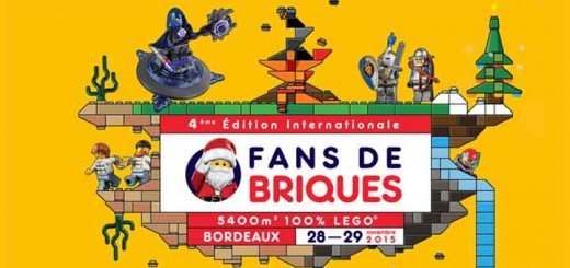 Expo Fans de Briques