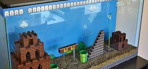 aquarium mario bros lego nintendo nes diy poissons