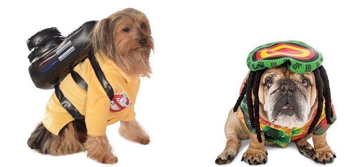 costumes chien halloween